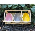 Porcelain Eggs in Crate (set of 6)