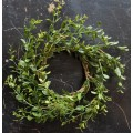 Baby Grass Candle Ring 5""