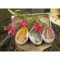 """Porcelain Eggs in Crate (set of 3) 2.75"""" x 10.25"""" x 5"""""""